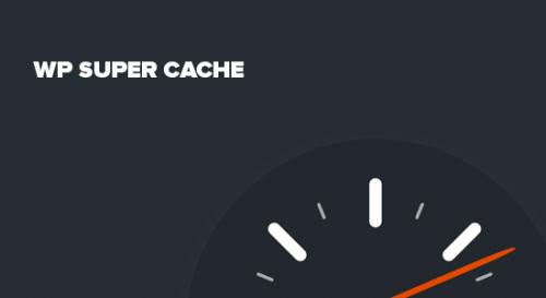مشکل سرعت وردپرس | افزونه کش در وردپرس | 5 مورد از بهترین افزونه های کش (Cache)